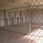 GALVANIZED CHAIN LINK KENNEL